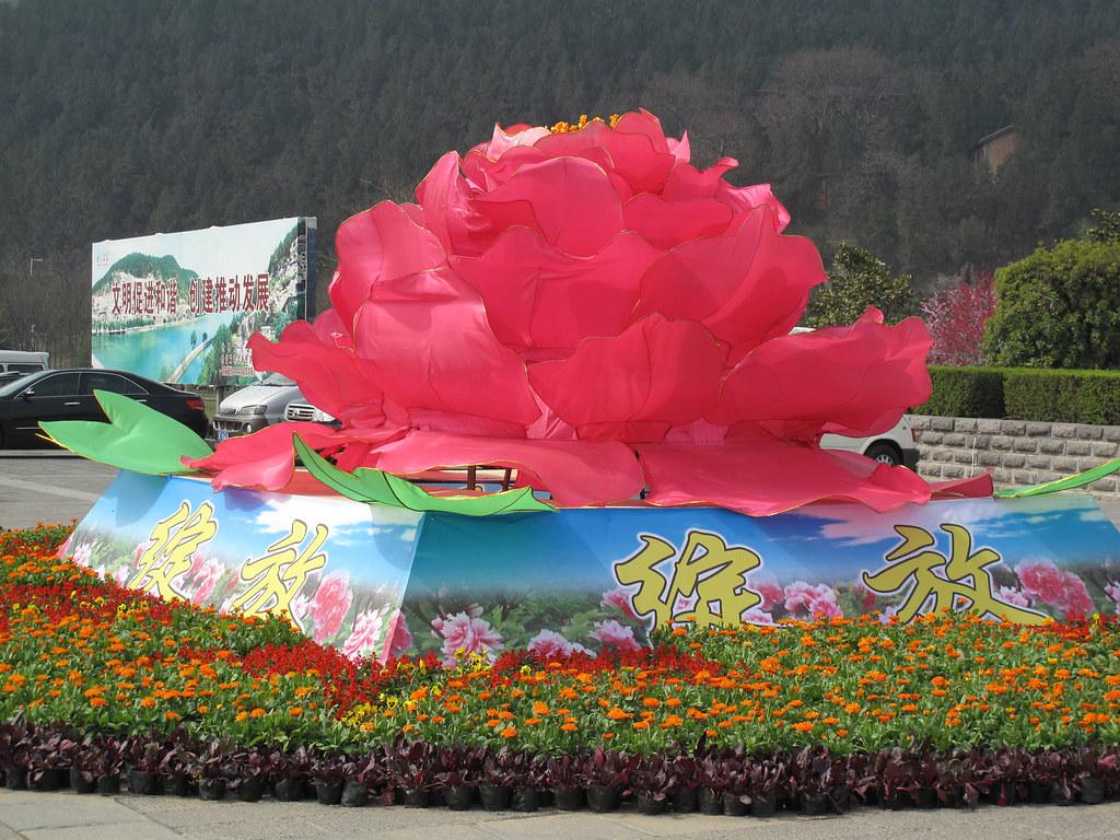 Peony festival in Louyang