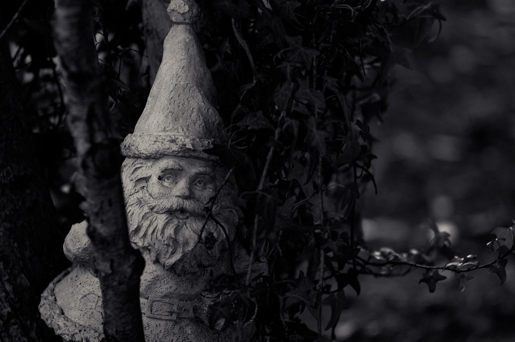 """She lingered in that charming little garden to say hello to the gnomes, such a glorious infestation!"""