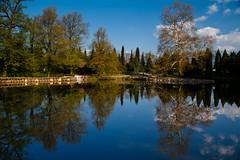 In the pond (Karmen Smolnikar) Tags: blue trees lake nature water clouds pond slovenia slovenija reflectiom explored fotocompetition fotocompetitionbronze yourwonderland