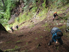 Scrambling up steep, slippery slopes