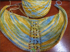 Reflection Shawl