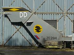 ZE294 / DD