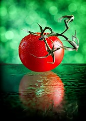 Red Tomato (153 of 365) (lighthack) Tags: atlanta red wallpaper stilllife color reflection green water rain fruit photoshop tomato georgia drops nikon bokeh vivid vine softbox brilliant claws labcolor project365 nikkor85mmf14d cs5 strobist d700