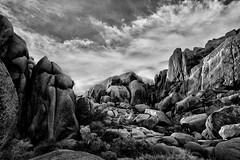 A Storm Is Coming (-william) Tags: sky clouds cool desert joshuatree cool2 cool5 cool3 cool6 cool4 d700 cool7 cool8 iceboxcool unanicool f64g28champ