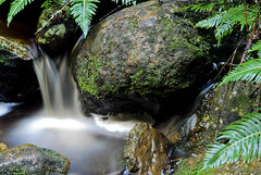 DSC_0078 (mkwoolley) Tags: motion water waterfall australia slowshutter tasmania snugfalls