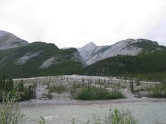 20100609_215333 (tiredofit) Tags: canada geotagged britishcolumbia can na northamerica toadriver geo:lat=5879673800 geo:lon=12552486000