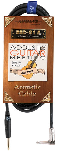 RIC-01A Limited Edition Acustic Guitar Meeting