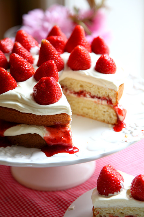 :: Mega Strawberry Summer Cake