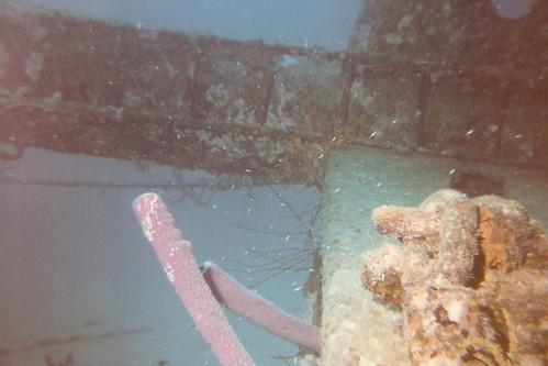 Wreck of the Hilma Hooker