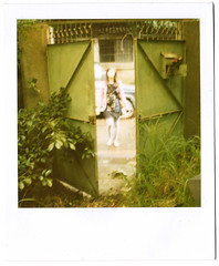 () Tags: film cherry 2010  779  polaroidsonaronestepsx70  floatingexhibition 46