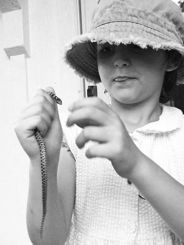 snake handler 3