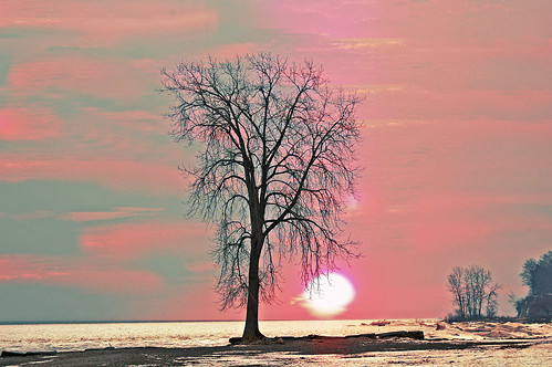 Lake Erie in Pink