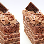 IMG_5511 chocolate cake (parallel 3D) thumbnail