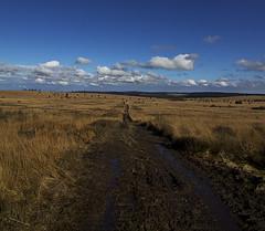 Hoge Venen (Arnoet) Tags: road canon landscape eos d wolken tokina crop venn hoge hautes fagnes weg arnout weer vanderhaegen venen natuurgebied eindeloos eupen 5o oostkantons 1116mm hoghes