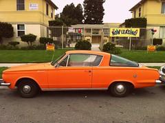 Orange (Incase.) Tags: girls car sign fence nowleasing aaronrose fakelove teensoapopera