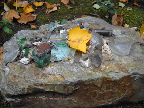 Longwood October 2010 132