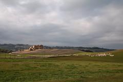 Senza titolo (Enzo Ghignoni) Tags: cielo collina casa animali piante nuvole erba verde