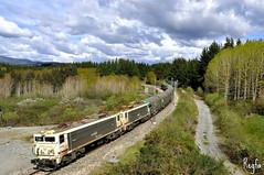 Pobra de Brollon (***REGFA***) Tags: renfe 2689851 trasona arcelor adif pobra de brollon pobradebrollon train comboio