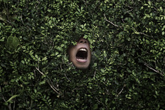 Emergence 3/3 (quincyeiwoo) Tags: emergence conceptual surreal bush nature leaves portrait concept emerging face mouth shout yell teeth