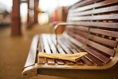 Lost paper (Caropaulus) Tags: rokkor minolta blur bokeh banc bench alpha7 50mm station gare strasbourg