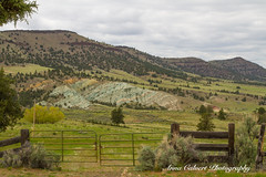 Green Painted Hills, Oregon (Anna Calvert Photography) Tags: oregon paintedhills southernoregon johndayfossilday fossils landscape hills mountains johndayfossilbedsnationalmonument volcanic outdoors
