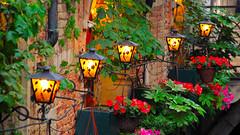 Le belle lampade di Venezia