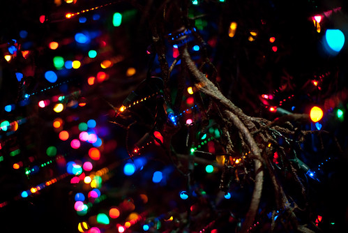Holiday Lights by Marc