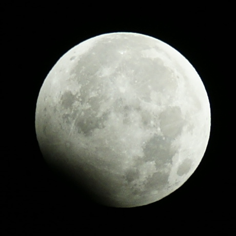 Lunar Eclipse 2010/1/1 4:42JST