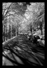 Amiata (Fabio Bernocchi) Tags: auto strada grigio neve montagna bianco nero ghiaccio amiata faggi