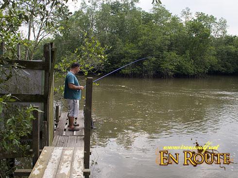 Pulau Ubin River Fishing