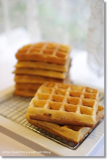 20100105_Waffle_107.JPG f