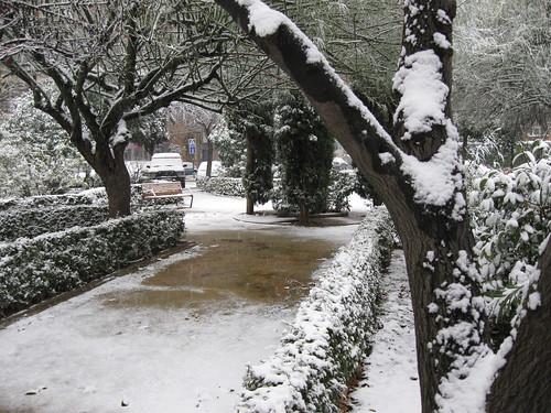 Nieve en el parque