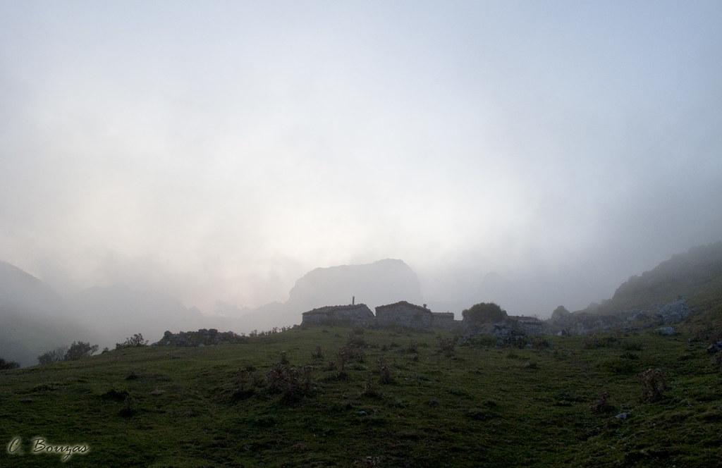 Niebla al anochecer