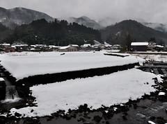 志谷 Shidani, Tottori