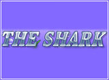 Online The Shark Slots Review