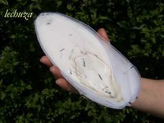 Jibia en tinta con arroz-hueso