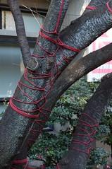 Red Bound Tree - Lucille Reyboz & Hitomi Fujiwara (satisam) Tags: red plants colour tree art japan tokyo aperture events bondage rope hiroo nomansland ef2470mmf28lusm frenchembassy lucillereyboz ambassadedefranceaujapon hitomifujiwara