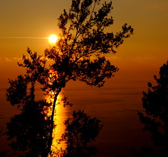ReD GoLd....  (dedicata a Gianva...) (Claudia Gaiotto) Tags: trees sunset sea italy gold tramonto liguria silouette corniglia 5terre atardacer mygearandmepremium
