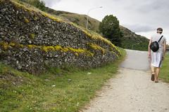 DSC00866 (Photo.Phinish) Tags: newzealand sony a500