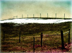 In The Pasture (DaraDPhotography) Tags: winter snow texture field hill pasture fencing lightroom cs4 skeletalmess daarklands flickrvault trolledproud thepyramidgroup
