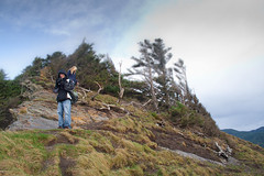 Oswald State Park-66.jpg (Thom Erickson) Tags: oregon coast pacificnorthwest oswaldstatepark