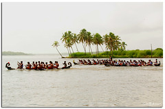 Welcome to Kerala (God's own country) (Sh@dows) Tags: green tourism water race canon boat action kerala backwater thrissur boatrace sarin godsowncountry eos450d topseven 450d chettuva sarinsoman welcometokerala gettyimagesindiaq3