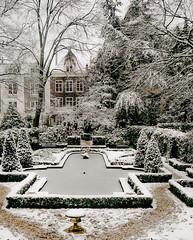 Dreamy snowy (campra) Tags: winter snow netherlands amsterdam museum garden baroque geelvinck hinlopen