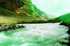 отличное зелёное фото.Tibet  00270001 by andrey.salikov