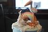 DSC_0078 (Sweet Fix) Tags: bird grass cake clouds fence monkey rainbow stork fondant buttercream gumpaste cakedecorating