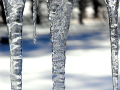 Crystal Stalactites (Lindsay =)) Tags: winter snow cold ice wisconsin icicles