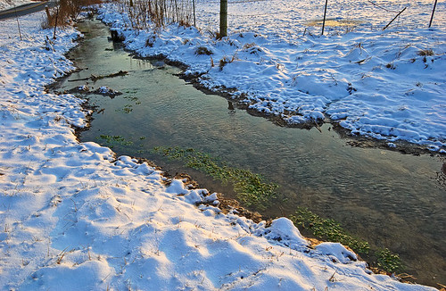 Spring run with watercress at the corner of Smizer Mill and Meramec Station Roads, near Valley Park, Missouri, USA - view with snow