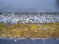 Roundwood Reservoir (mod pics)
