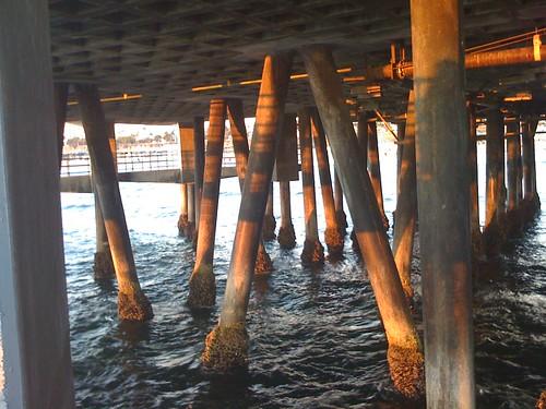 Santa Monica Pier Pilings