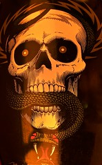 Powell Peralta Mike McGill (irvin.nu) Tags: canon eos skull snake indy oldschool fisheye tokina independent bones skateboard powell 169 jawbone mcgill 1017 tailbone peralta powellperalta ribbones mikemcgill reissue 400d skullsnake bowlbombers irvinnu